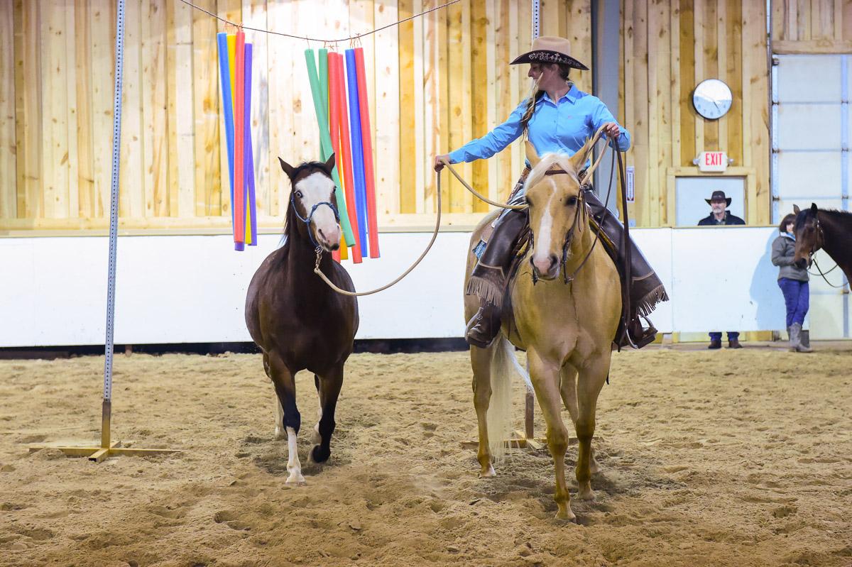 Equus Curito Clinic