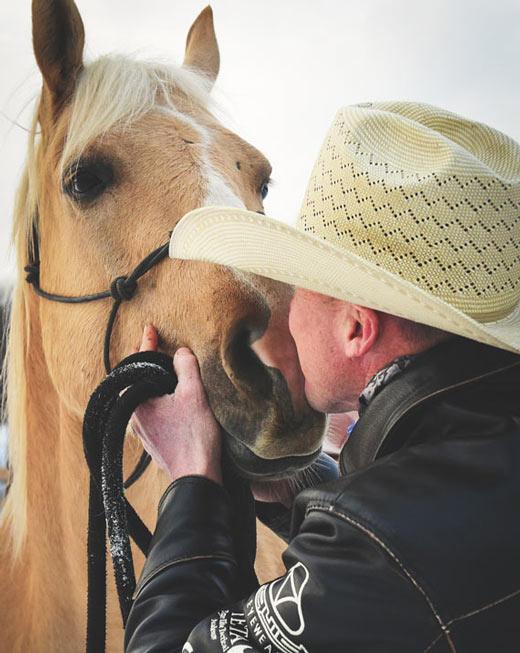 EC Experience - Kansas Equine Care