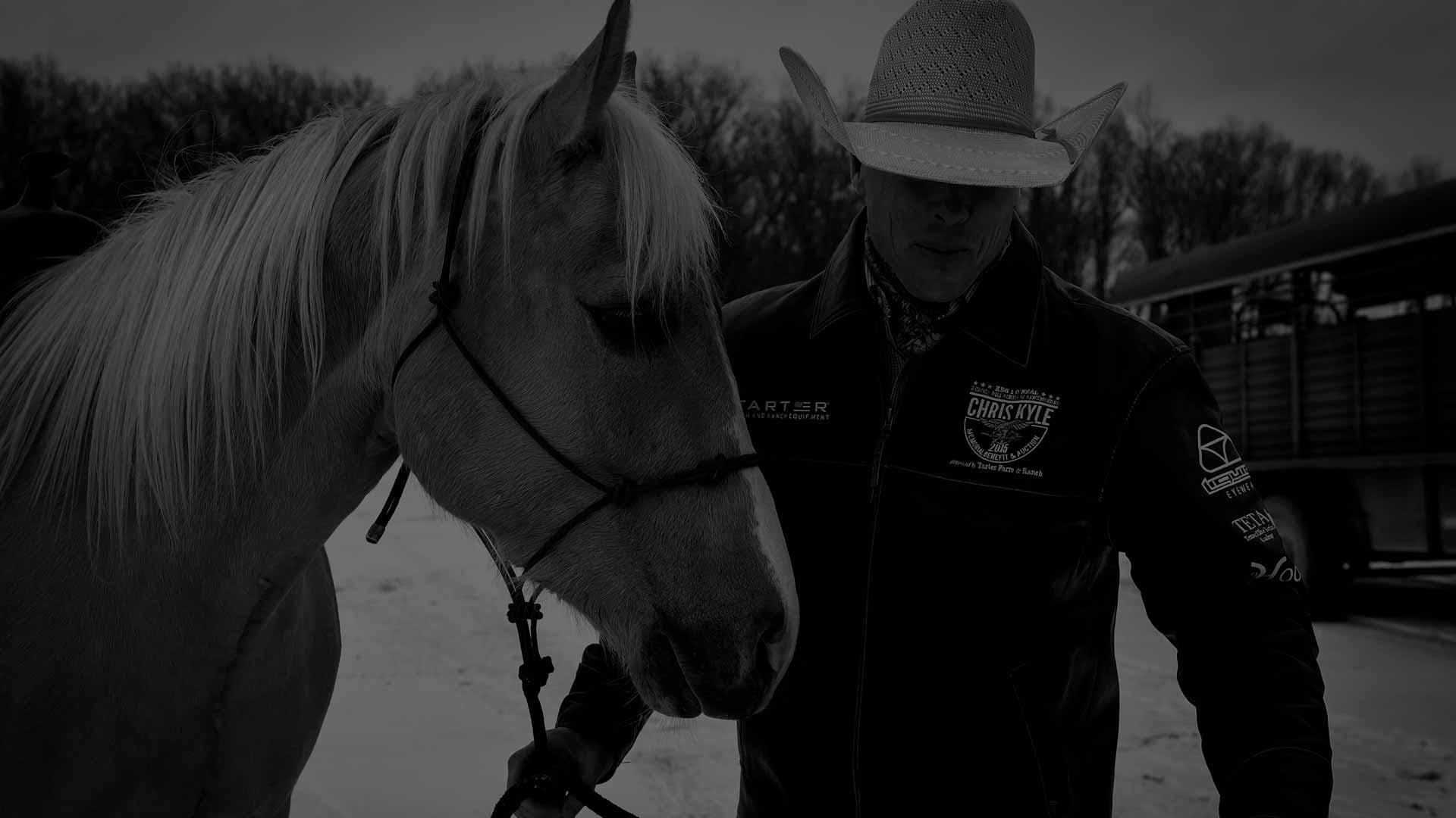 Equine Care - Equus Curito