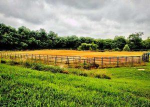 Equus Curito Outdoor Arena