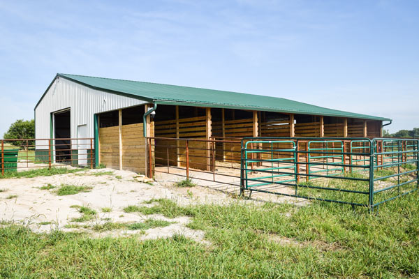 Elder Haven Barn