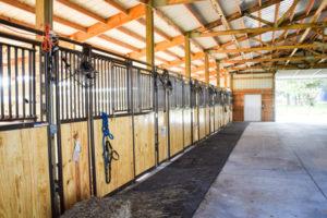 Stalls at Elder Haven